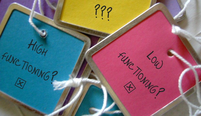 Why High Functioning Autism Is So >> Decoding The High Functioning Label Musings Of An Aspie